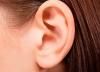 Кандидоз уха - лечение